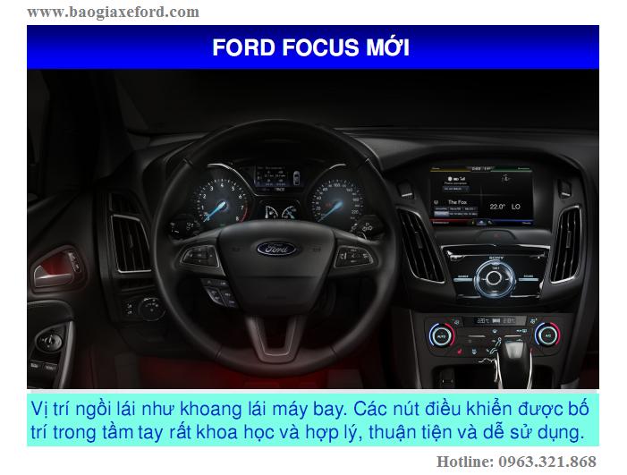Focus 31