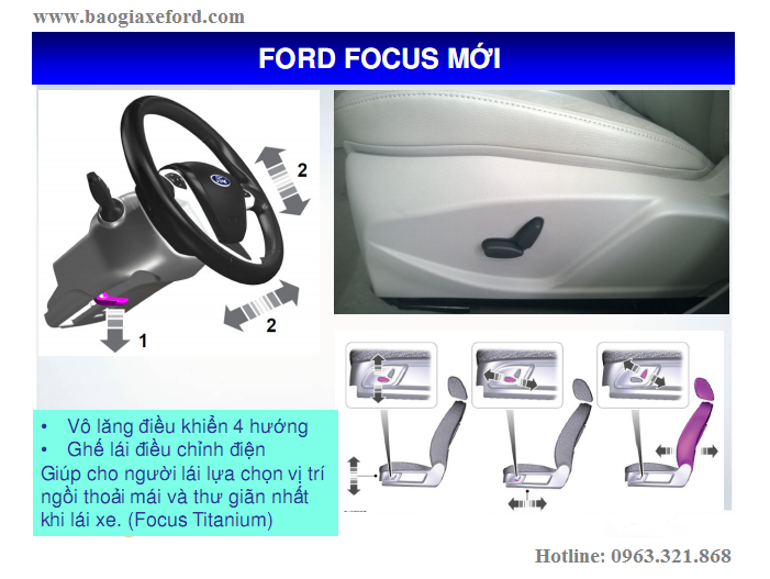 Focus 41