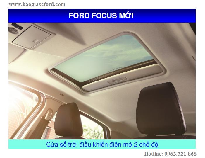 Focus 48