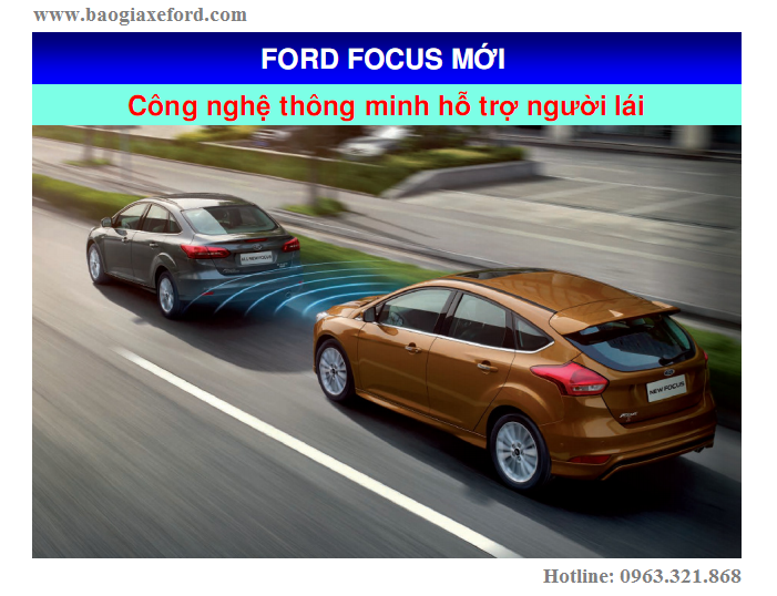 Focus 50