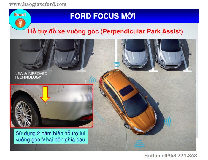 Focus 63