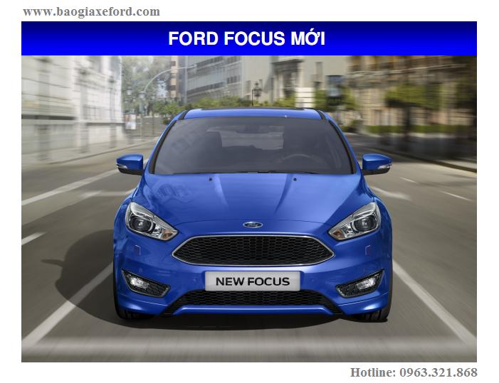 Focus 7