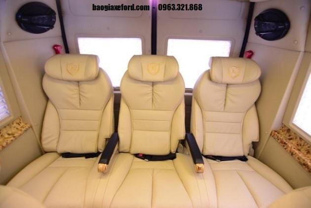 Ford Transit Dcar Limousine (7)